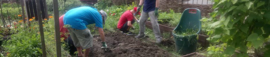 Co w trawie Domowego Ogrodu piszczy?